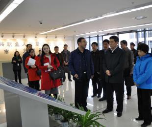 省委常委、省委组织部部长邓向阳一行 莅临合肥要素大市场